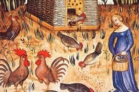 Il pollaio nel Medioevo: dall'Archeodromo di Poggibonsi alle ...