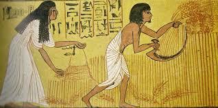 EGIZI ECONOMIA